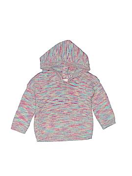 Peek... Pullover Hoodie Size 6-12 mo